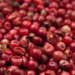 10 полезных свойств ягод годжи