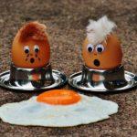 Яичные стандарты: как не ошибиться при покупке