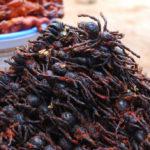 С хрустящей корочкой: как готовят ядовитых пауков в Камбодже